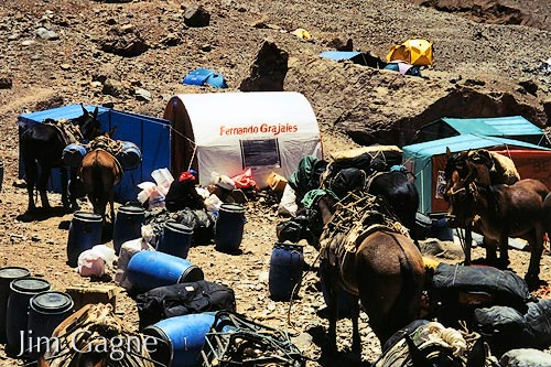Gear brought into Base Camp by mules