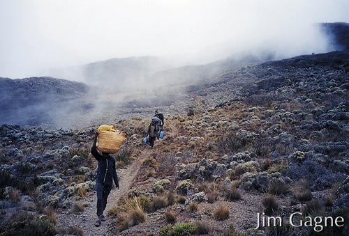 Porters carrying gear to camp 3