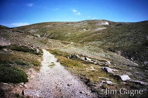 A well marked trail to the summit